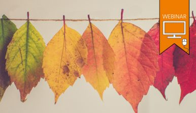 "Text:""WEBINAR"". Autumn leaves hanging off twine, arranged from green, through yellow to red. Photo by Chris Lawton."